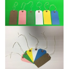 250 Colour Strung Tags 120 x 60mm